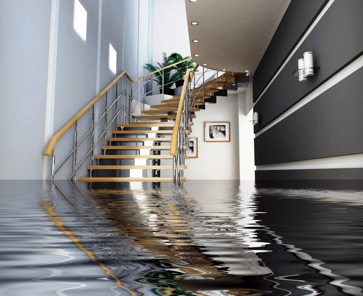 water-damage loss assessor dublin